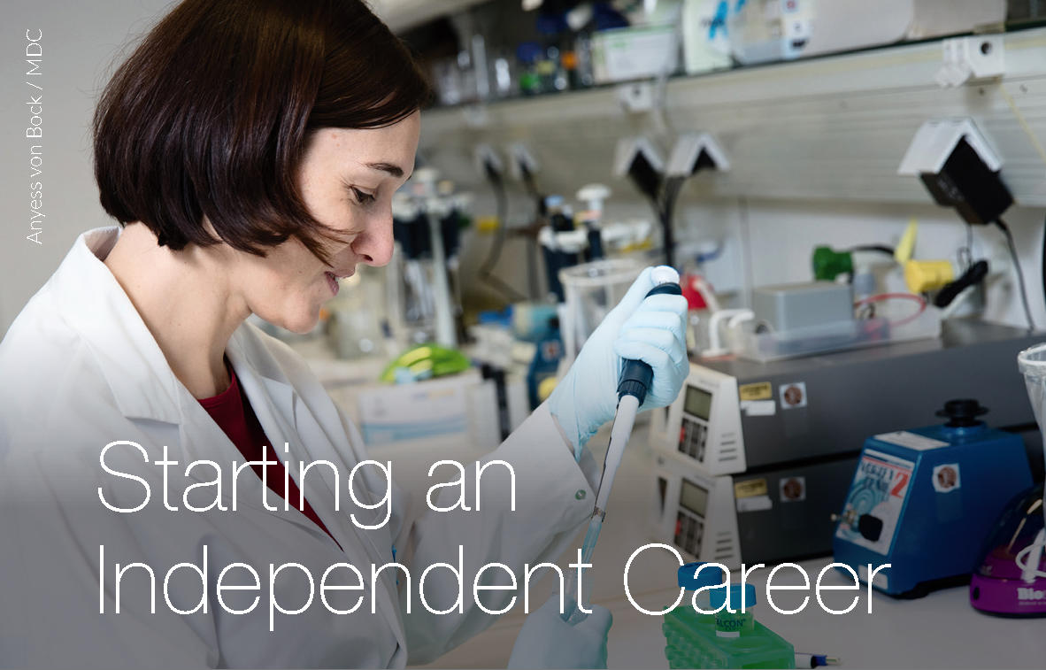 Starting an Independent Career