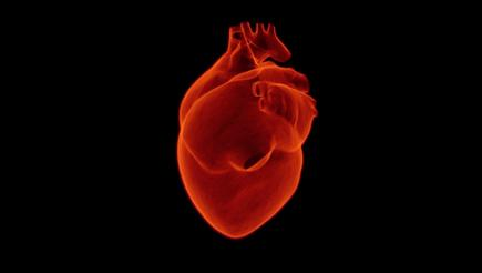 Artistic rendering of a heart